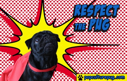 Respect the Pug2